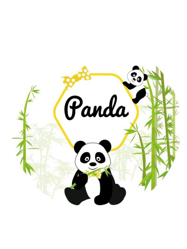 décoration de fête anniversaire baptême panda personnalisation