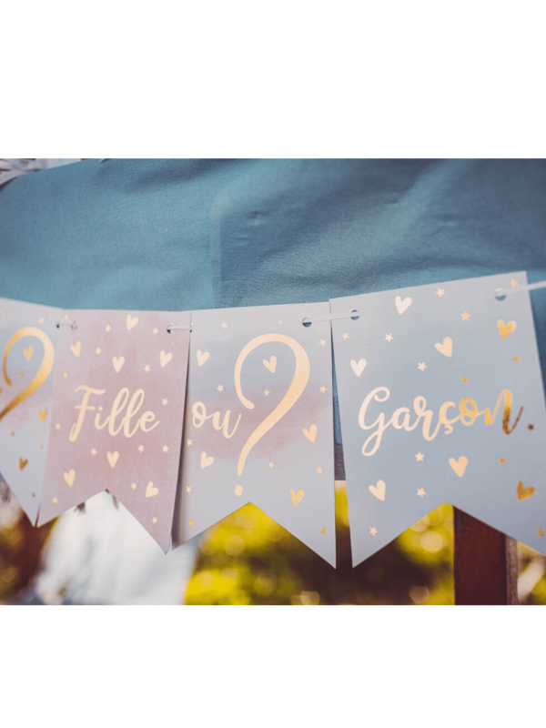guirlande gender reveal bleu rose doré