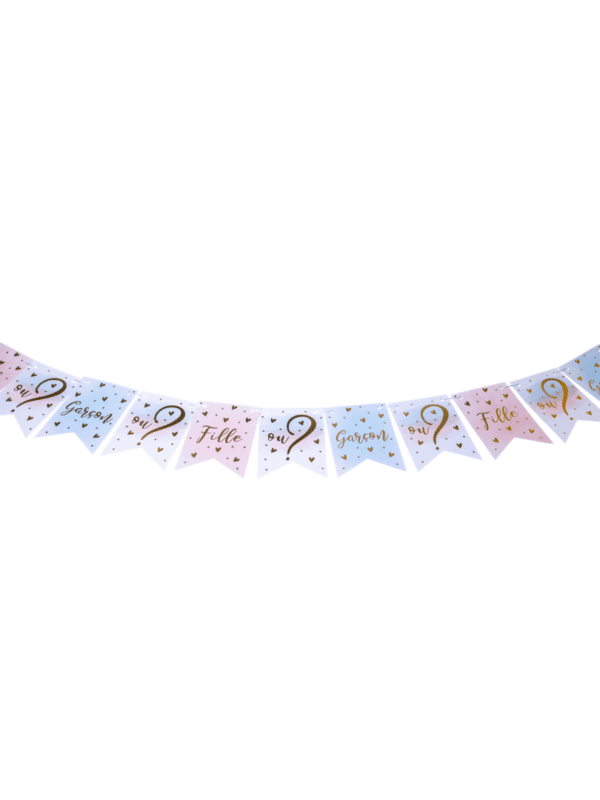 guirlande 11 fanions gender reveal baby shower